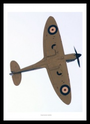Supermarine Spitfire in Flight Photo