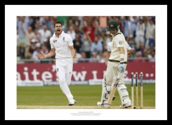 2013 Ashes Photo - James Anderson Celebrates