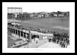 Cricket Ground Prints - The Oval 1947 Historic Photo
