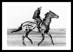 Red Rum Training Gallop 1978 Horse Racing Photo