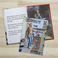 Personalised Ladybird's How it Works - The Hangover