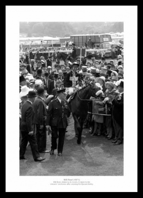 Mill Reef 1971 Epsom Derby Horse Racing Photo Memorabilia