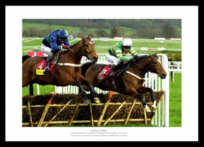 Istabraq 3rd Cheltenham Gold Cup Horse Racing Photo Memorabilia