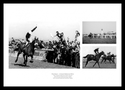 Red Rum Horse Racing Legend Photo Memorabilia