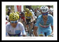 Froome Quintana Nibali 2015 Tour de France Photo Memorabilia