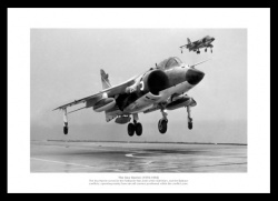 Royal Navy Sea Harrier 1982 Classic Photo