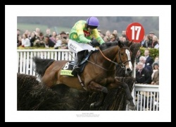 Kauto Star 2007 Cheltenham Gold Cup Photo Memorabilia
