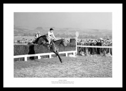Arkle 1964 Cheltenham Gold Cup Photo Memorabilia