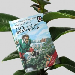 Personalised Jack and the Beanstalk Ladybird Classics Book