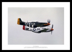 P51-Mustang World War 2 Fighter Aviation Photo