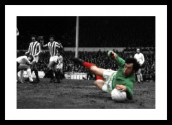 Stoke City Gordon Banks Legend Spot Colour Photo Memorabilia