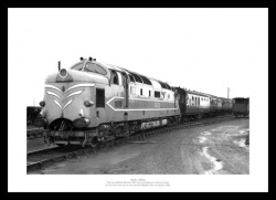 Deltic First Trial Run 1956 Classic Train Photo Memorabilia