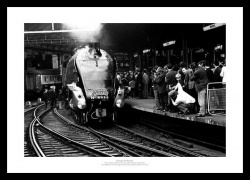 Gresley A4 Pacific Historic Steam Train Photo Memorabilia