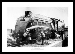 Mallard (No.60022) Historic 1963 Steam Train Photo Memorabilia